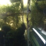 фитофильтр из травника